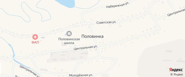 Центральная улица на карте села Половинки с номерами домов