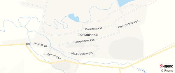 Карта села Половинки в Алтайском крае с улицами и номерами домов