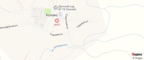 Садовая улица на карте села Колово с номерами домов