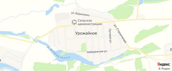 Карта Урожайного села в Алтайском крае с улицами и номерами домов