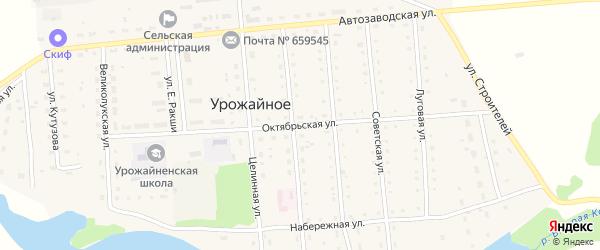 Октябрьская улица на карте Урожайного села с номерами домов