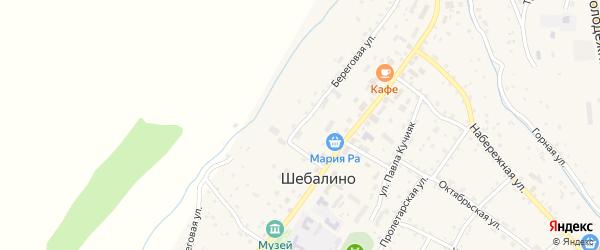 Береговая улица на карте села Шебалино с номерами домов