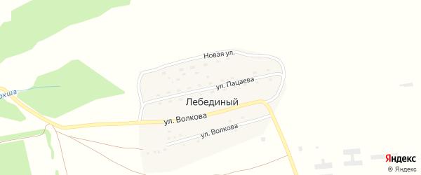 Улица Пацаева на карте Лебединого поселка с номерами домов