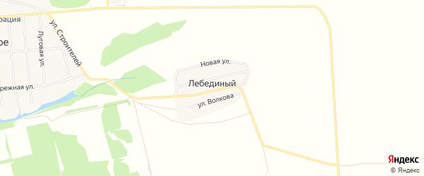 Карта Лебединого поселка в Алтайском крае с улицами и номерами домов