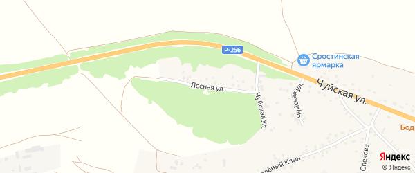 Лесная улица на карте села Сростки с номерами домов