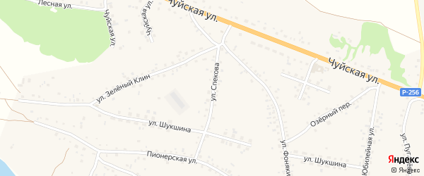 Улица Спекова на карте села Сростки с номерами домов