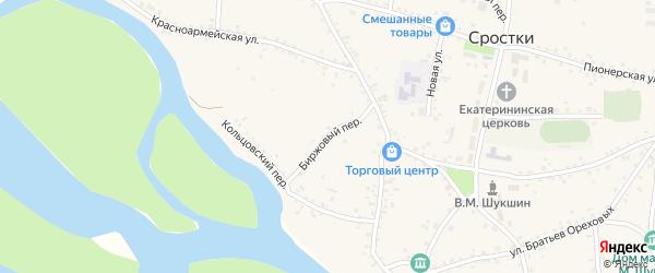 Биржовый переулок на карте села Сростки с номерами домов