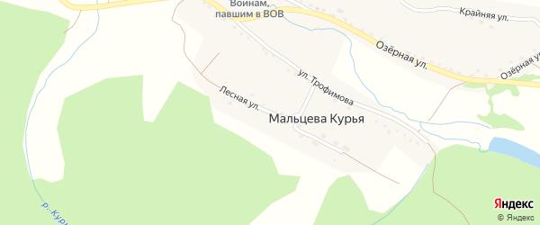 Лесная улица на карте поселка Мальцевой Курьи с номерами домов
