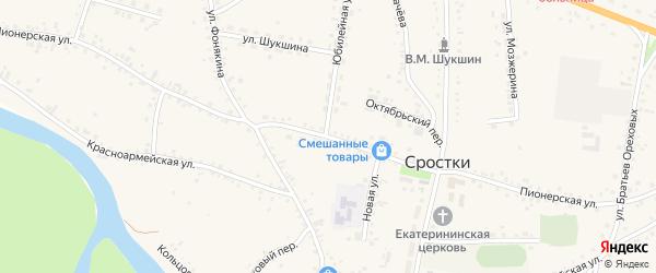 Пионерская улица на карте села Сростки с номерами домов