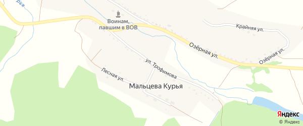 Улица им Трофимова на карте поселка Мальцевой Курьи с номерами домов