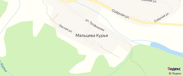 Луговая улица на карте поселка Мальцевой Курьи с номерами домов