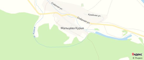 Карта поселка Мальцевой Курьи в Алтайском крае с улицами и номерами домов