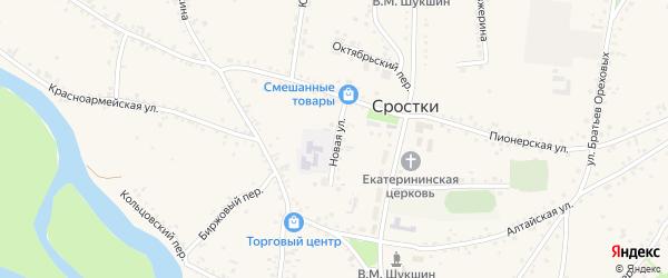 Новая улица на карте села Сростки с номерами домов