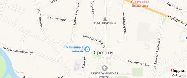 Октябрьский переулок на карте села Сростки с номерами домов