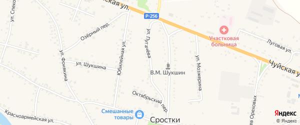 Улица Пугачева на карте села Сростки с номерами домов