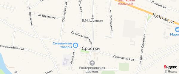 Улица Дружбы на карте села Сростки с номерами домов