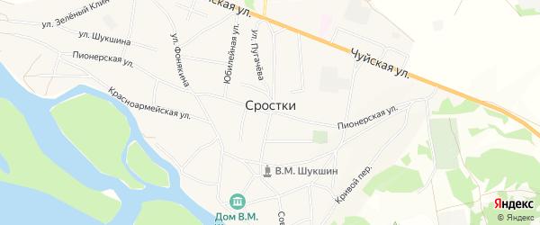 Карта села Сростки в Алтайском крае с улицами и номерами домов