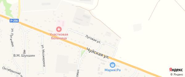 Луговая улица на карте села Сростки с номерами домов