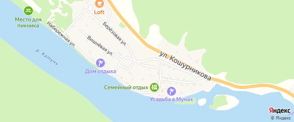 Березовая улица на карте села Усть-Муны с номерами домов