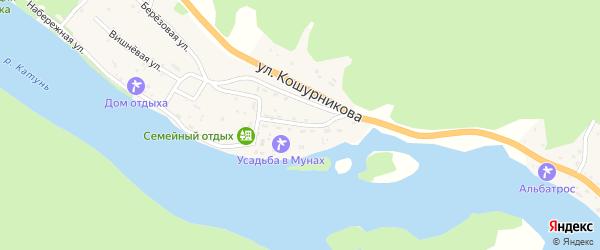 Катунская улица на карте села Усть-Муны с номерами домов