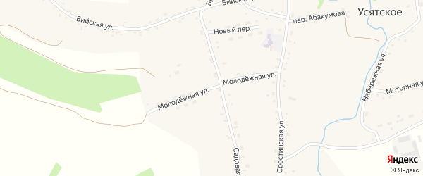 Молодежная улица на карте Усятского села с номерами домов