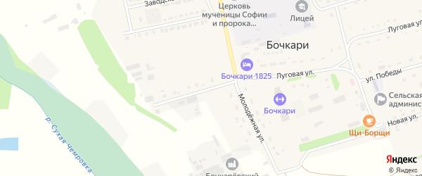 Молодежная улица на карте села Бочкарей с номерами домов