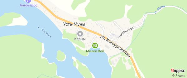 Солнечный переулок на карте села Усть-Муны с номерами домов