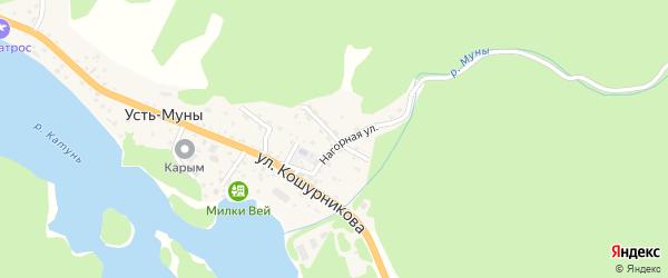 Переулок Зеленый Клин на карте села Усть-Муны с номерами домов