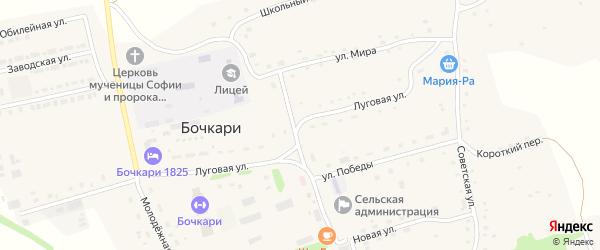 Луговая улица на карте села Бочкарей с номерами домов