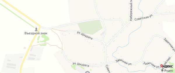 Улица Шкурата на карте села Бочкарей с номерами домов