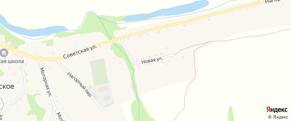 Новая улица на карте Усятского села с номерами домов