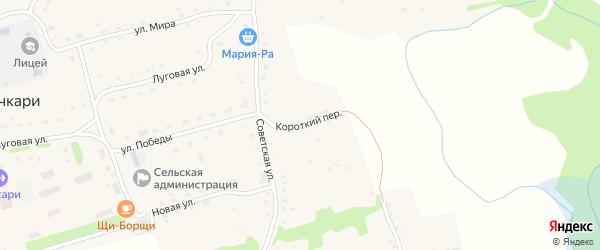 Короткий переулок на карте села Бочкарей с номерами домов