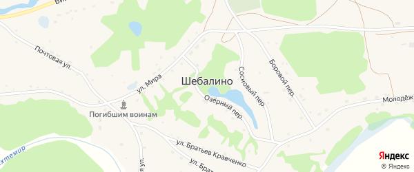 Заречная улица на карте села Шебалино с номерами домов