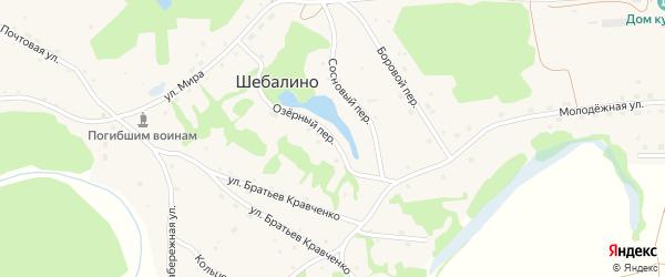 Озерный переулок на карте села Шебалино с номерами домов
