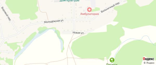 Новая улица на карте села Шебалино с номерами домов