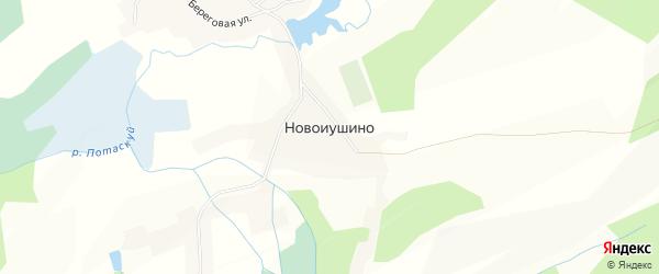 Карта села Новоиушино в Алтайском крае с улицами и номерами домов