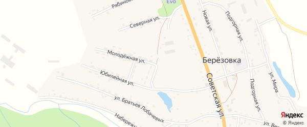 Молодежная улица на карте села Березовки с номерами домов