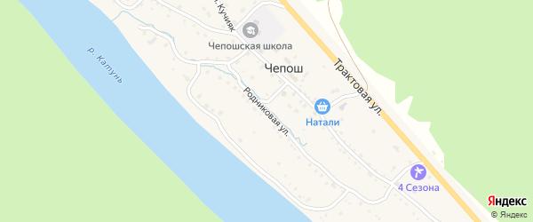 Родниковая улица на карте села Чепош с номерами домов