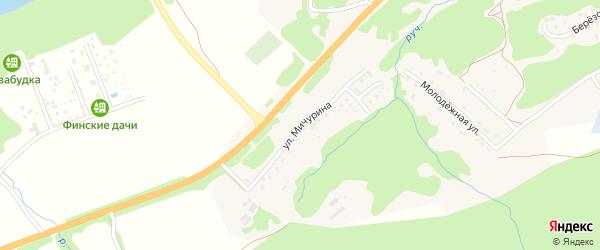 Улица Мичурина на карте села Соузги с номерами домов
