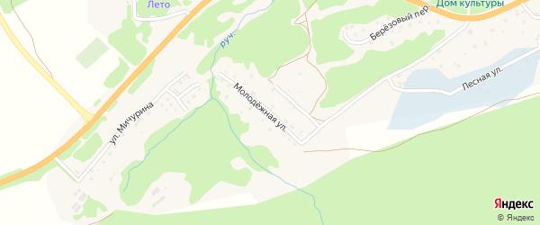 Молодежная улица на карте села Соузги с номерами домов