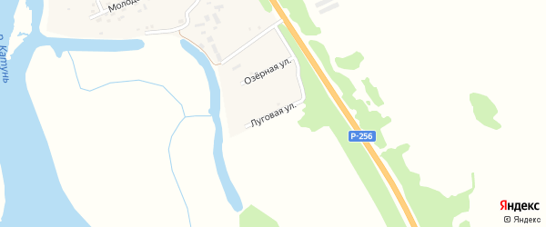 Озерная улица на карте села Быстрянки с номерами домов