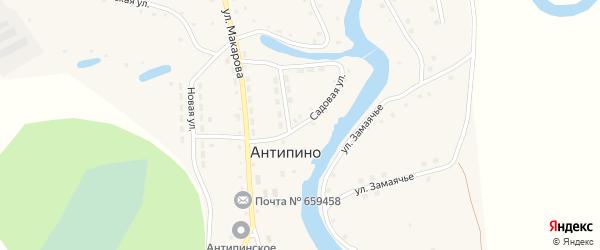 Садовая улица на карте села Антипино с номерами домов