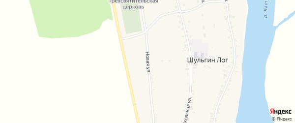 Новая улица на карте села Шульгина Лога с номерами домов