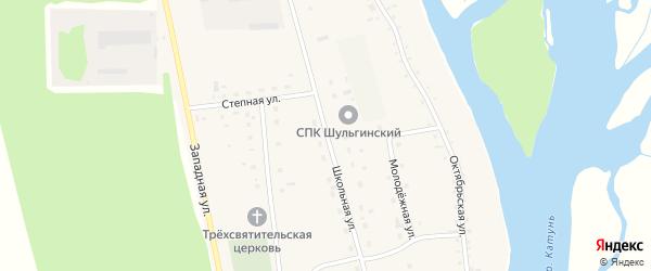 Школьная улица на карте села Шульгина Лога с номерами домов
