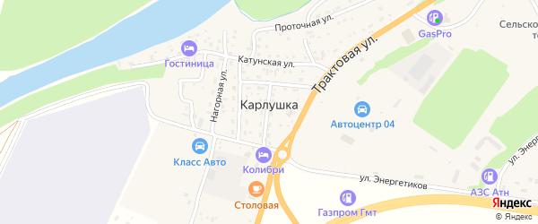 Береговой 1-й переулок на карте поселка Карлушки с номерами домов