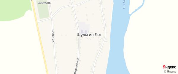 Октябрьская улица на карте села Шульгина Лога с номерами домов