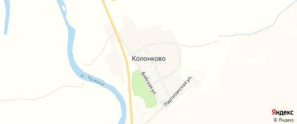 Карта села Колонково в Алтайском крае с улицами и номерами домов