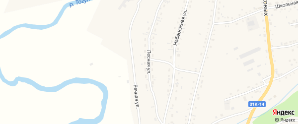 Лесная улица на карте села Тогула с номерами домов