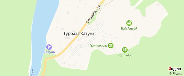 Улица Романтиков на карте села Турбазы Катунь с номерами домов
