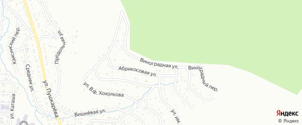 Виноградная улица на карте Горно-Алтайска с номерами домов
